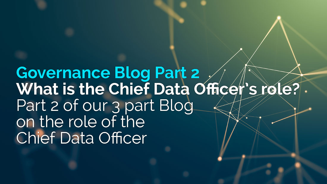 What is the Chief Data Officer's role